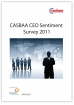 CEO Sentiment Survey